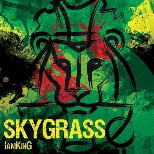 Skygrass - I Am King (2013/MP3)
